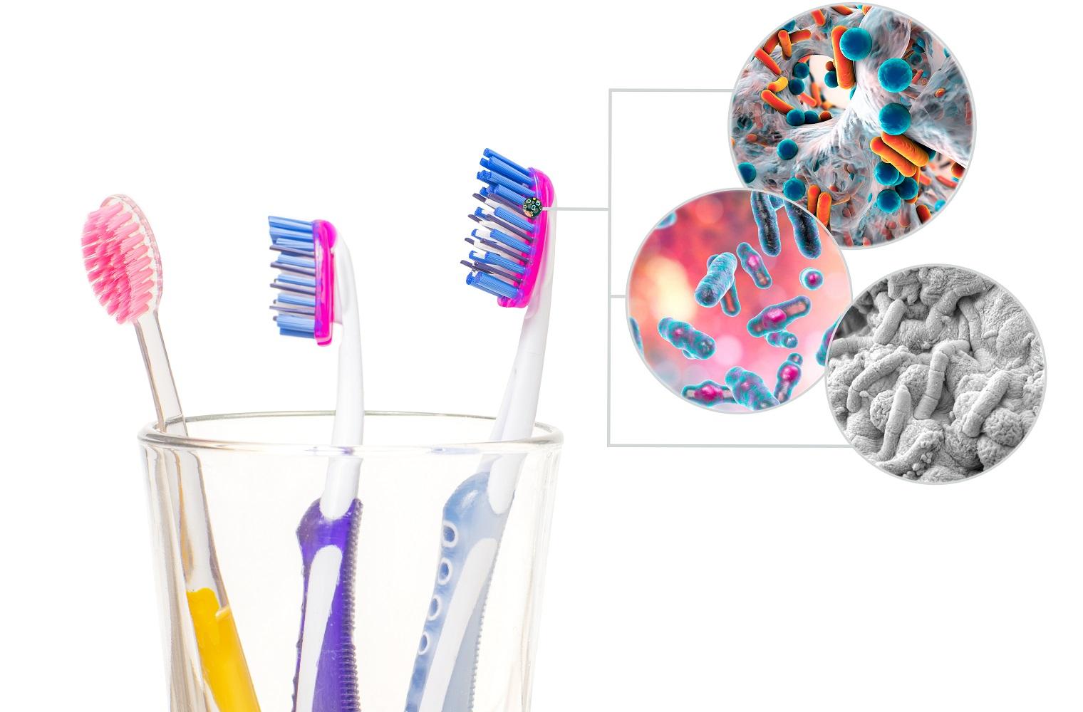 Toothbrush storage-dental hygiene-toothbrush safety